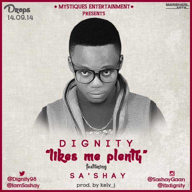 [Birthday Drop] Likes Me Plenty by Dignity ft. Sa'Shay (Prod by Kelv J)